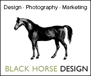 Black Horse Design (West Wales Horse)
