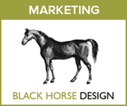 Black Horse Design Marketing (West Wales Horse)
