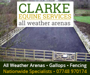 Clarke Equine Services 2019 (West Wales Horse)