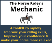 The Horse Rider's Mechanic 01 (West Wales Horse)