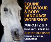 Justine Harrison Workshop March 2019 (West Wales Horse)