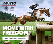Musto 3 (West Wales Horse)