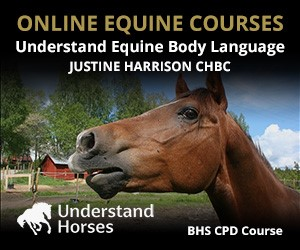 UH - Understand Equine Body Language (West Wales Horse)